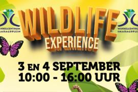 Wildlife Experience